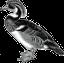 docbook-duck.png