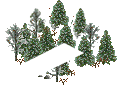 data/rules/classic/resources/images/forest/boreal/boreal0010.png