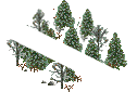data/rules/classic/resources/images/forest/boreal/boreal0101.png