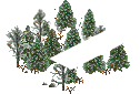 data/rules/classic/resources/images/forest/boreal/boreal1000.png