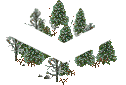 data/rules/classic/resources/images/forest/boreal/boreal1001.png