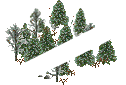 data/rules/classic/resources/images/forest/boreal/boreal1010.png