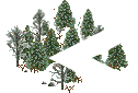 data/rules/classic/resources/images/forest/boreal/boreal1100.png