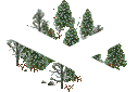 data/rules/classic/resources/images/forest/boreal/boreal1101.png