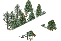 data/rules/classic/resources/images/forest/boreal/boreal1110.png