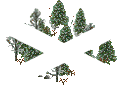 data/rules/classic/resources/images/forest/boreal/boreal1111.png