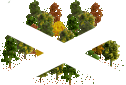 data/rules/classic/resources/images/forest/broadleaf/broadleaf1111.png