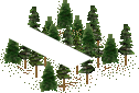 data/rules/classic/resources/images/forest/conifer/conifer0001.png