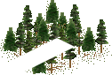 data/rules/classic/resources/images/forest/conifer/conifer0010.png