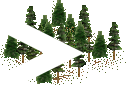 data/rules/classic/resources/images/forest/conifer/conifer0011.png