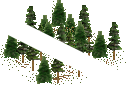 data/rules/classic/resources/images/forest/conifer/conifer0101.png
