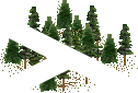 data/rules/classic/resources/images/forest/conifer/conifer0111.png