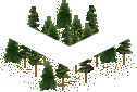 data/rules/classic/resources/images/forest/conifer/conifer1001.png