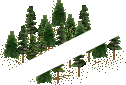 data/rules/classic/resources/images/forest/conifer/conifer1010.png
