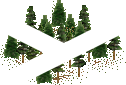 data/rules/classic/resources/images/forest/conifer/conifer1011.png