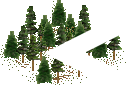 data/rules/classic/resources/images/forest/conifer/conifer1100.png