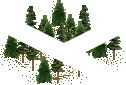 data/rules/classic/resources/images/forest/conifer/conifer1101.png