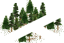 data/rules/classic/resources/images/forest/conifer/conifer1110.png