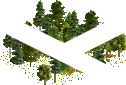 data/rules/classic/resources/images/forest/mixed/mixed1101.png