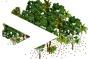 data/rules/classic/resources/images/forest/rain/rain0011.png