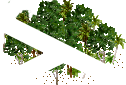 data/rules/classic/resources/images/forest/rain/rain0111.png