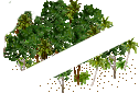 data/rules/classic/resources/images/forest/rain/rain1010.png