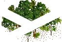 data/rules/classic/resources/images/forest/rain/rain1011.png
