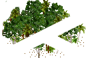 data/rules/classic/resources/images/forest/rain/rain1110.png