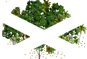 data/rules/classic/resources/images/forest/rain/rain1111.png